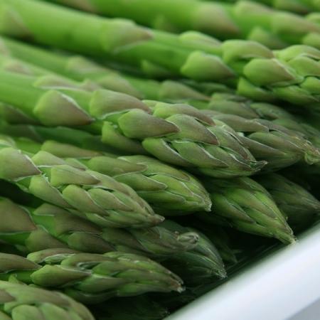 Connovers Collosal - Asparagus